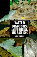 Water Dragons, Sailfin Lizards, and Basilisks