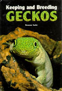 Keeping and Breeding Geckos