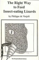 The Right Way to Feed Insect-eating Lizards